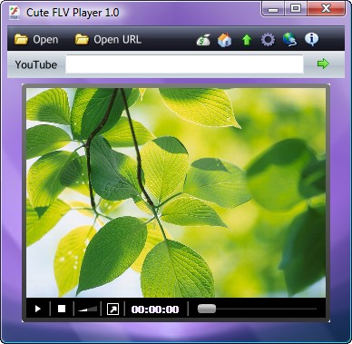 Easy to use media player to play Adobe Flash FLV video files